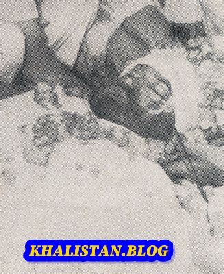 Bhai Harcharan Singh Shaheedi Saroop
